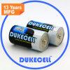 Lr14 C Am2 1.5V Alkaline Battery