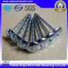 Hierro galvanizado clavos Nails / Uñas / Común clavos de concreto