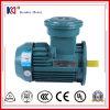 炭鉱のコンベヤーのための耐圧防爆電気ACモーター