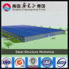 Легкая мастерская стальной структуры конструкции (SSW-310)