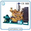 Pompe à eau de jardin de double aspiration de moteur diesel d'irrigation