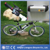 36V Brushless E Bike/Electric Bicycle Motor/Electric Scooter
