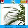 CE&ISO9001の3〜8ミリメートルクリア穀物模造ガラス