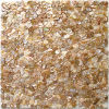 Mosaico fresco de Shell con la viruta al azar del acoplamiento