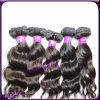 Fornecedor malaio do Weave do cabelo Curly de Remy da alta qualidade