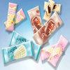 PrintingのアイスキャンデーPackaigng Bag