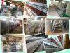 Venda quente na gaiola automática da camada da alta qualidade de Afica