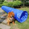 De Tunnel van de Hond van de Behendigheid van de Opleiding van de hond