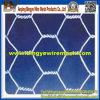 Netwerk van de Draad van de Kip van het roestvrij staal het Hexagonale van Anping