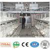 필리핀 가금을%s 보일러 닭 감금소 닭 농기구