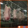 خنزير عمليّة ذبح خطّ تجهيز يزرع معمل آلة لأنّ خنزير لحم خنزير