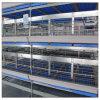 De Kooi van de Kip van de Batterij van de Grill van het Type van Apparatuur H van de Landbouw van het gevogelte voor Verkoop