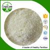 Fertilizzante del solfato di magnesio del grado di agricoltura