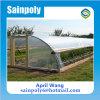 Easilly는 Hydroponic를 위한 정원 소형 온실을 설치했다