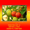 7inch 1280*800 Lvds 350nits IPS LCD Module