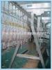 Equipamento novo da matança das aves domésticas: Galinha que arranca a máquina para a venda quente