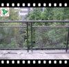 10.76mm закаленное прокатанное стекло для балюстрады/ограждать