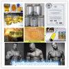 高品質の脂肪質の非常に熱いステロイドTrenbolon/Trenbolone Enanthate /Tren E