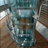 別荘のガラス安いホテルの骨董品の上昇の小さい乗客のホームエレベーター