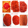 Getrocknete rote Pfeffer-Körnchen und Puder