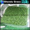 メートルの高密度ごとの160stitchの20mmのプラスチック草