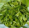 Extrait de thé vert de qualité sur la vente