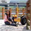 trotinette elétrico de Segway do Chariot da mobilidade de China
