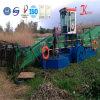 Equipamento da limpeza dos desperdícios da água para a exportação