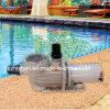 수영풀 & 온천장 수도 펌프 - 장기 사용 방위 압력 필터