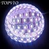 최고 밝은 IP20 LED 지구 유연한 LED 빛 지구 3 년 보장