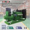 Generador eléctrico del biogás de la potencia animal del estiércol para 10kw/20kw