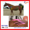 Kinesio Tape pour Sports Horse Therapy Curing Taping
