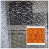 鶏の網または六角形の金網または六角形のワイヤー網