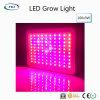 Qualität 3wx100PCS LED wachsen für Kräuter u. medizinische Pflanzen hell