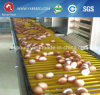 家禽は販売のための小屋の農機具の層の鶏のケージを制御する