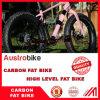 26 カーボンSram 11の速度の脂肪質のバイクカーボンFatbike
