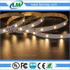 3 color de la luz de tira de la garantía SMD5050 LED del año solo con el CE RoHS enumerado