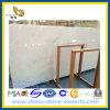 Losa de mármol blanca de Castro para los azulejos del piso y de la pared (YYL)