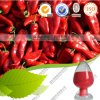 Colorant chaud de rouge de paprika de poudre de couleur rouge de piments de vente