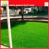 Landscaping поставщик золота лужайки травы китайский