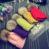 Fancy卸し売りFoxかRaccoon Fur Ball Beanie Hats