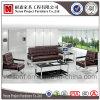 Sofà del salotto dell'ufficio del fornitore della Cina con i piedini del metallo (NS-S8801)