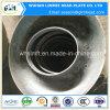 Protezioni dell'estremità del tubo del acciaio al carbonio con i fori di perforazione per le caldaie