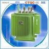 transformateur multifonctionnel de distribution de qualité de 0.1mva 20kv