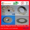 Изготовленный на заказ Size Ring Pamernent NdFeB Neodymium Magnet для Speaker