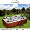 Indicatore luminoso subacqueo acrilico della STAZIONE TERMALE LED della piscina della vasca di bagno di Aristech/mini vasca calda