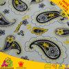 Design popolare di Minky Print Fabric