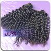 Extension noire naturelle de cheveux humains de Vierge de la meilleure qualité de qualité