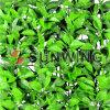 옥외 훈장 정원 인공적인 잎 담 산울타리