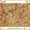 Il Brasile Polished Golden Persa Granite per Wall/Flooring Tiles